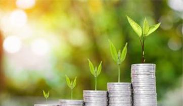 Osmosis' approach to ESG